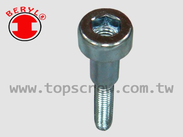Cylinder Screw