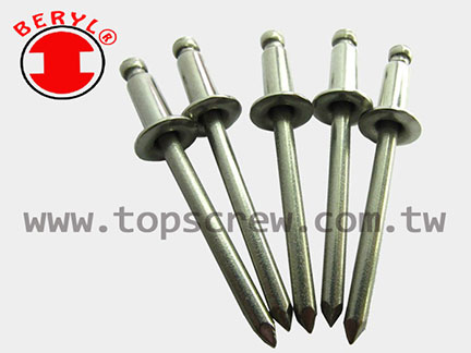 All Stainless Steel Blind Rivet TS.SSASS Series