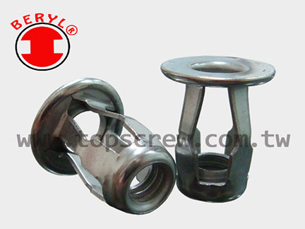 Stainless Steel Blind Jack Nuts
