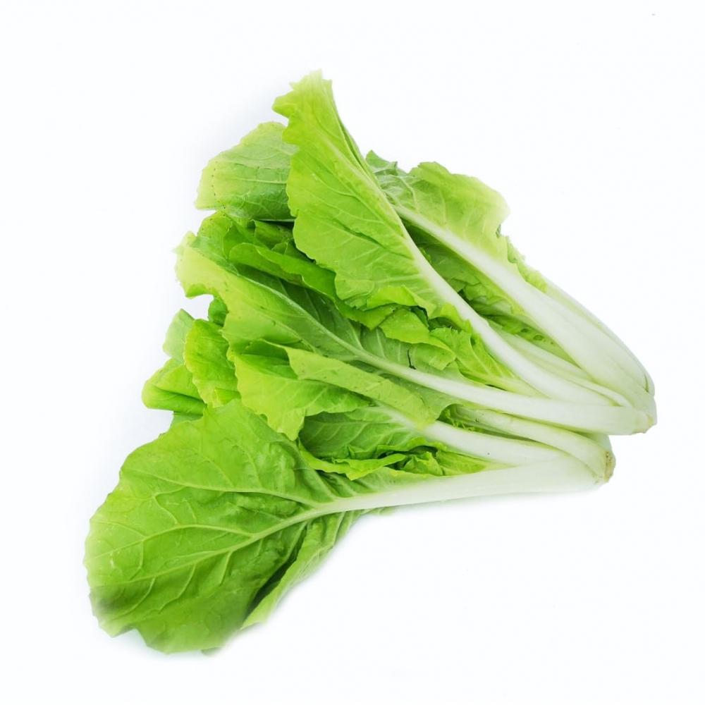 小白菜 300g