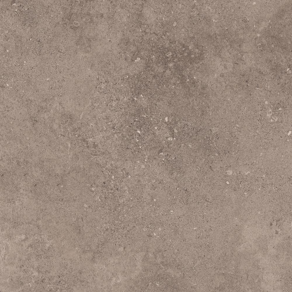 PL6603M-棕