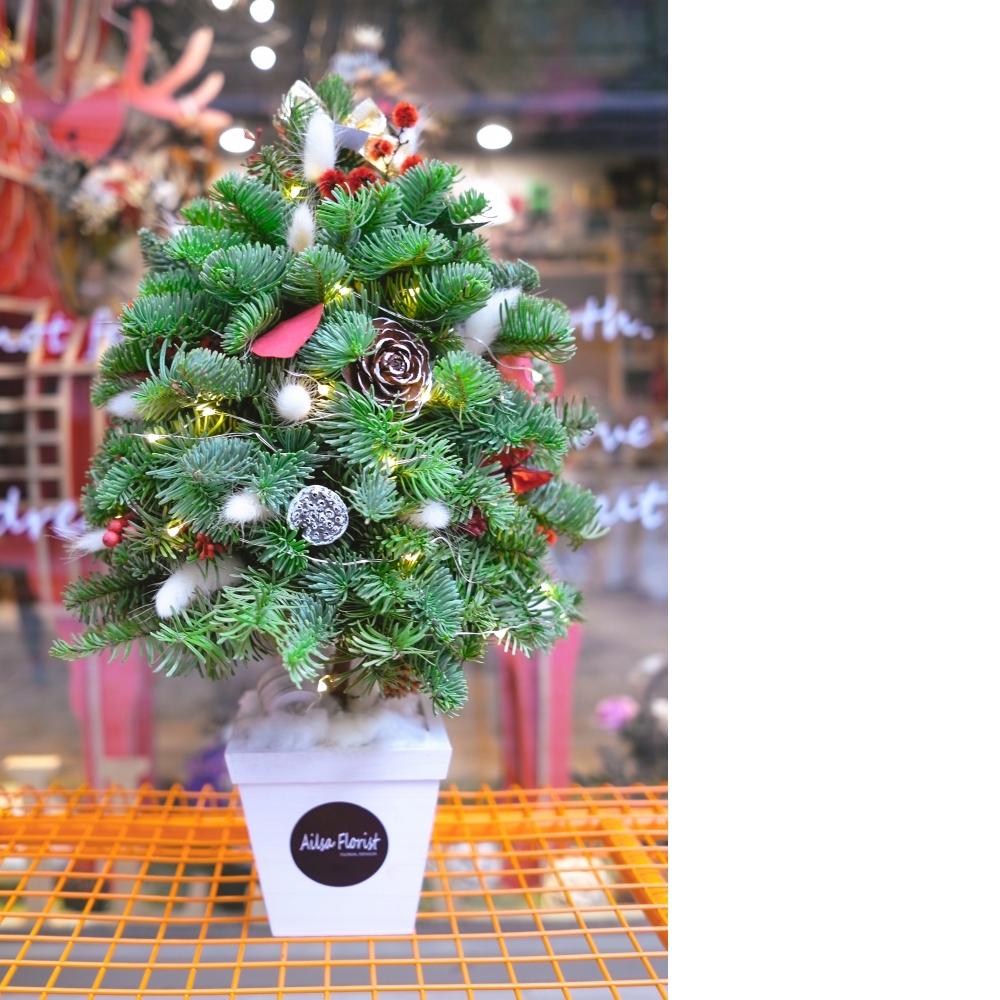 2017聖誕樹