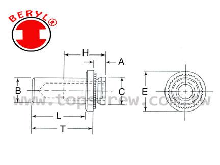 TSC 8 壓鑄螺母