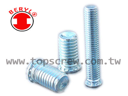 TSC 6 植入螺絲