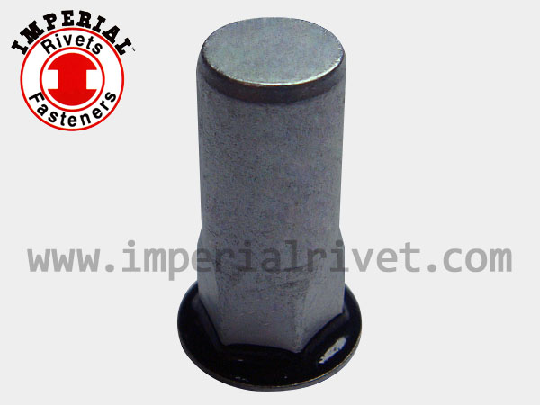 Close End Rivet Nut with Seal