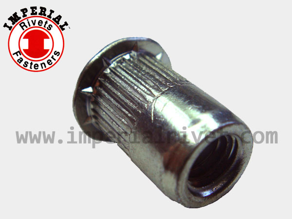 Wedge Under Head Knurled Rivet Nut