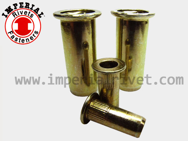 Flat Head Rivet Nut, Closed End BEM-C, BAI-C