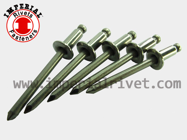 All Steel Blind Rivet Ts.sas. Series