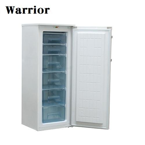 4尺8直立單門冷凍櫃