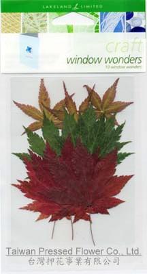 01701 SA-pack -Mapleleaf Red