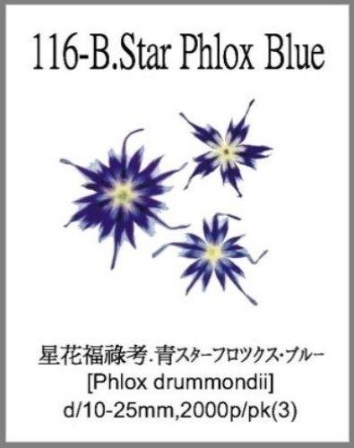 116-B.Star