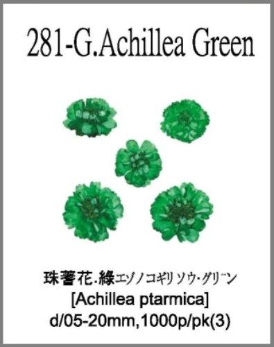 281-G.Achi