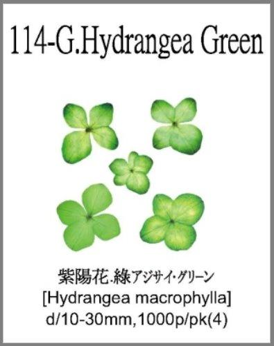 114-G.Hydr