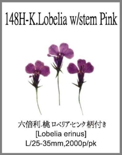 148H-K.Lob