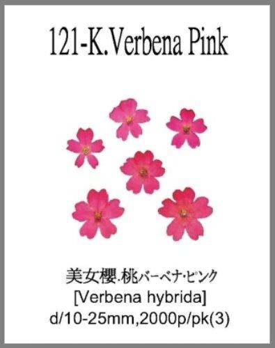 121-K.Verb