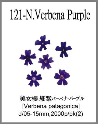 121-N.Verb