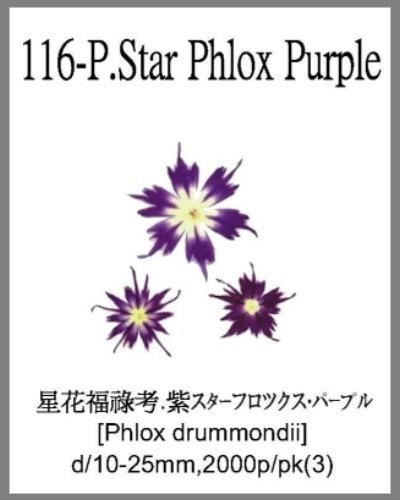 116-P.Star